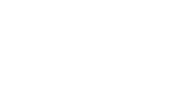 lisap-logo-white
